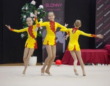 Slonny Cup 2014