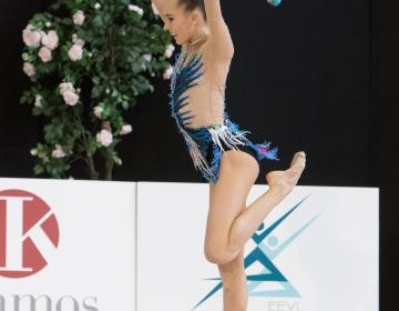 Eesti MV ilu- ja rühmvõimlemises 2015